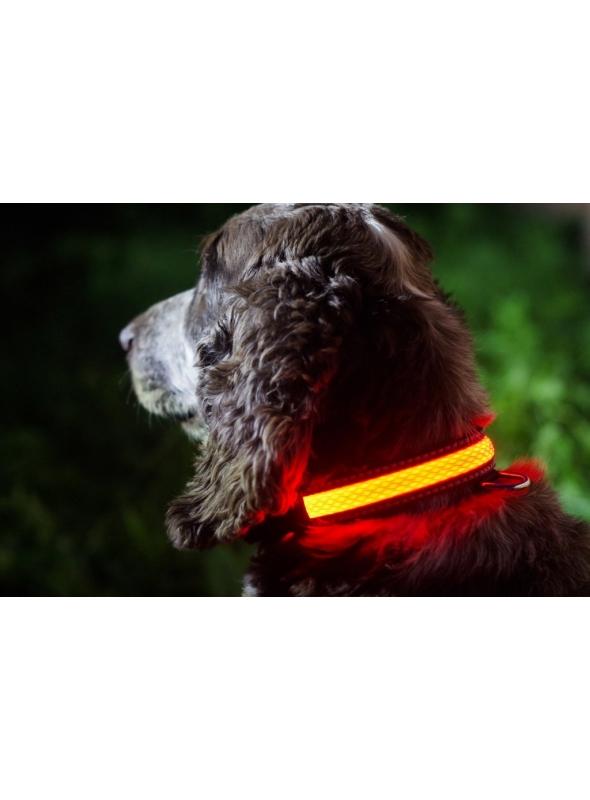 Iluminačný obojok na psíka, ružový - S/M (31/41cm)