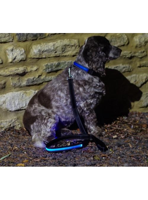 Vodítko na psíka, modré